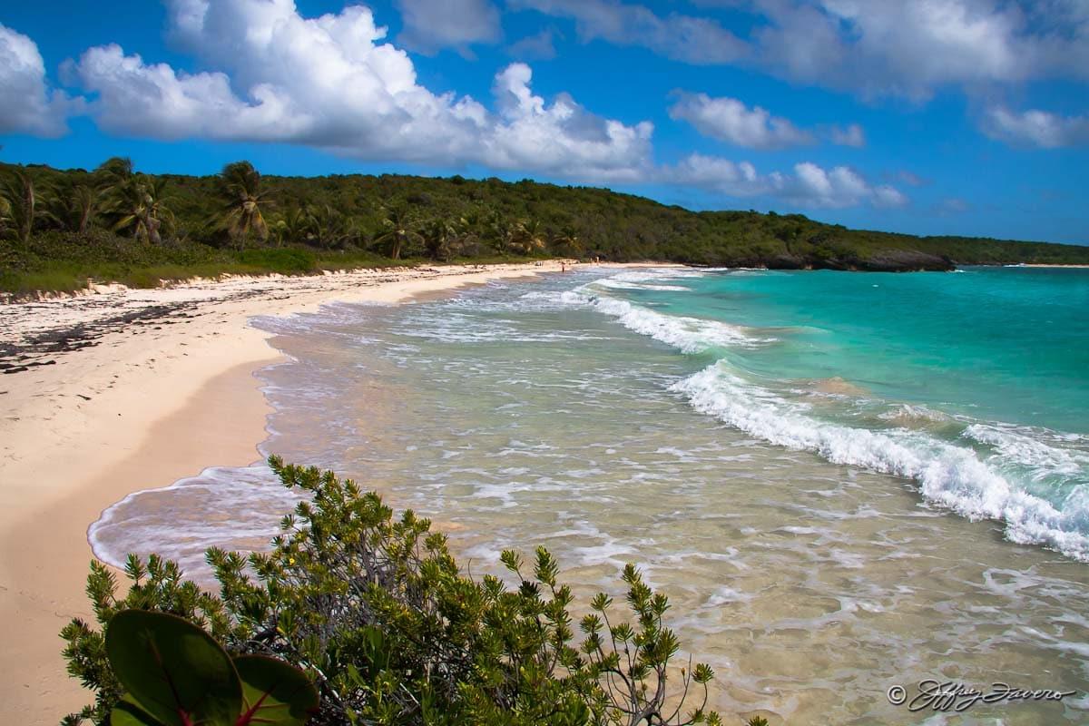 Vieques Beaches