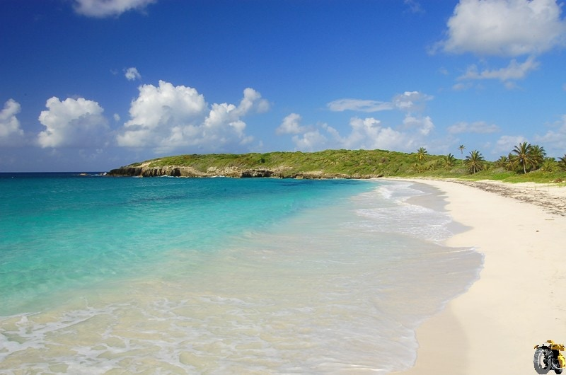 Discover The Most Por Beaches In Vieques Island For Swimming Sunbathing And Have A Great Time With Your Friends Family