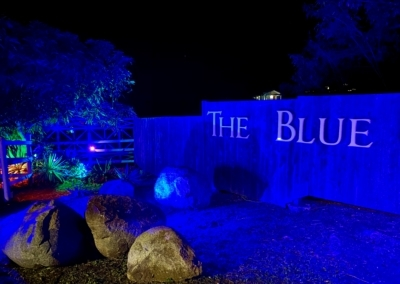 ws_The Blue - 02202011